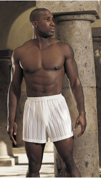 SHEER, STRIPE SPANDEX KNIT BOXER SHORTS