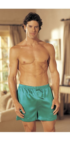 Solid silk boxer shorts